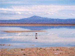 Foto van Salar de Atacama in Chili.