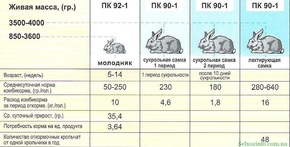 Схема откорма кроликов комбикормом