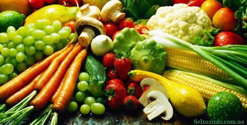 Бизнес на выравнивании овощей
