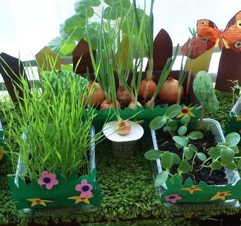 Как вырастить огород на подоконнике зимой