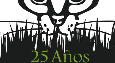 Logo25añosVS