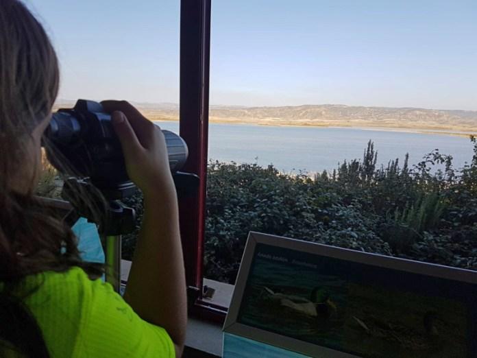 Imagen propia en Laguna de Pitillas