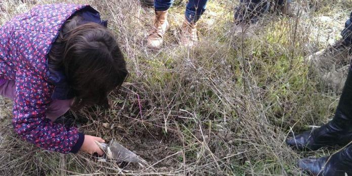 Fotografía de la actividad cazando trufas en Metauten