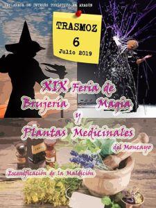 XIX feria de brujería y magia, Trasmoz