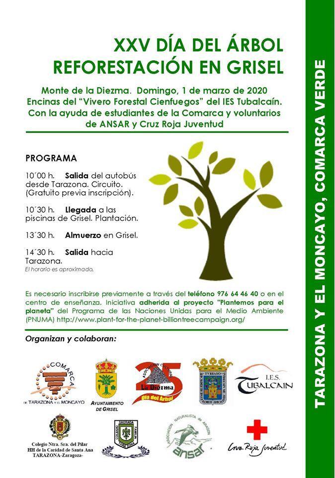 Día del árbol 2020 en Grisel
