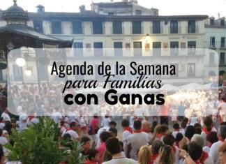 Fiestas Ribera Navarra