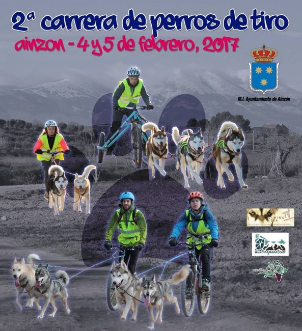 Mushing Ainzón