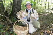 semestafakta-mushroom picking
