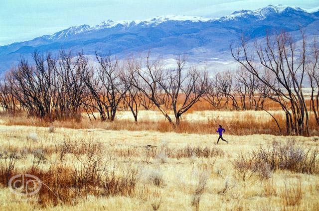 Trail running in open grasslands