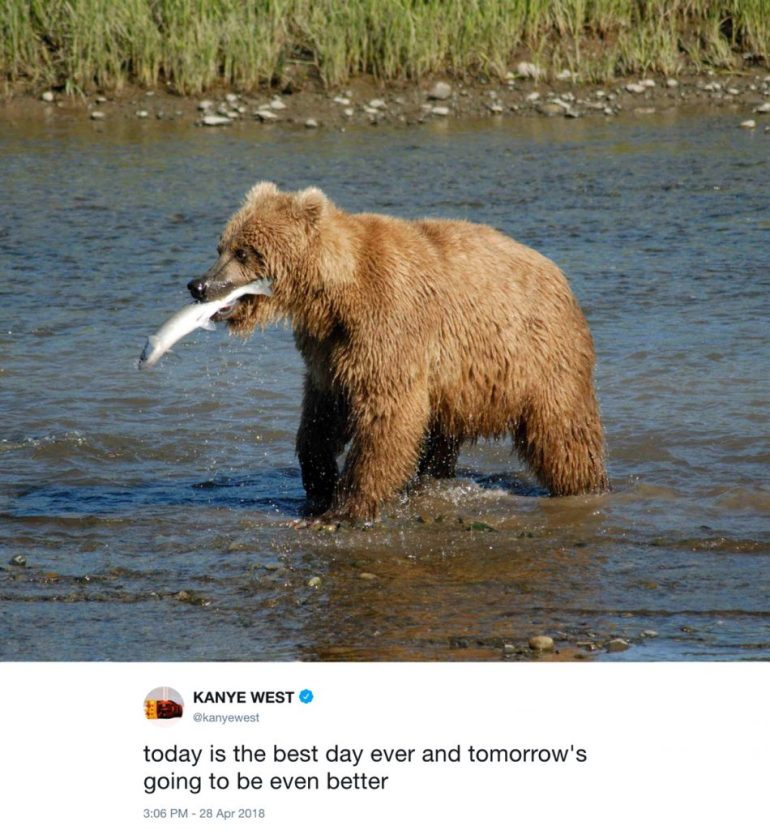 today is the best day ever - kanye west tweets with photos of bears