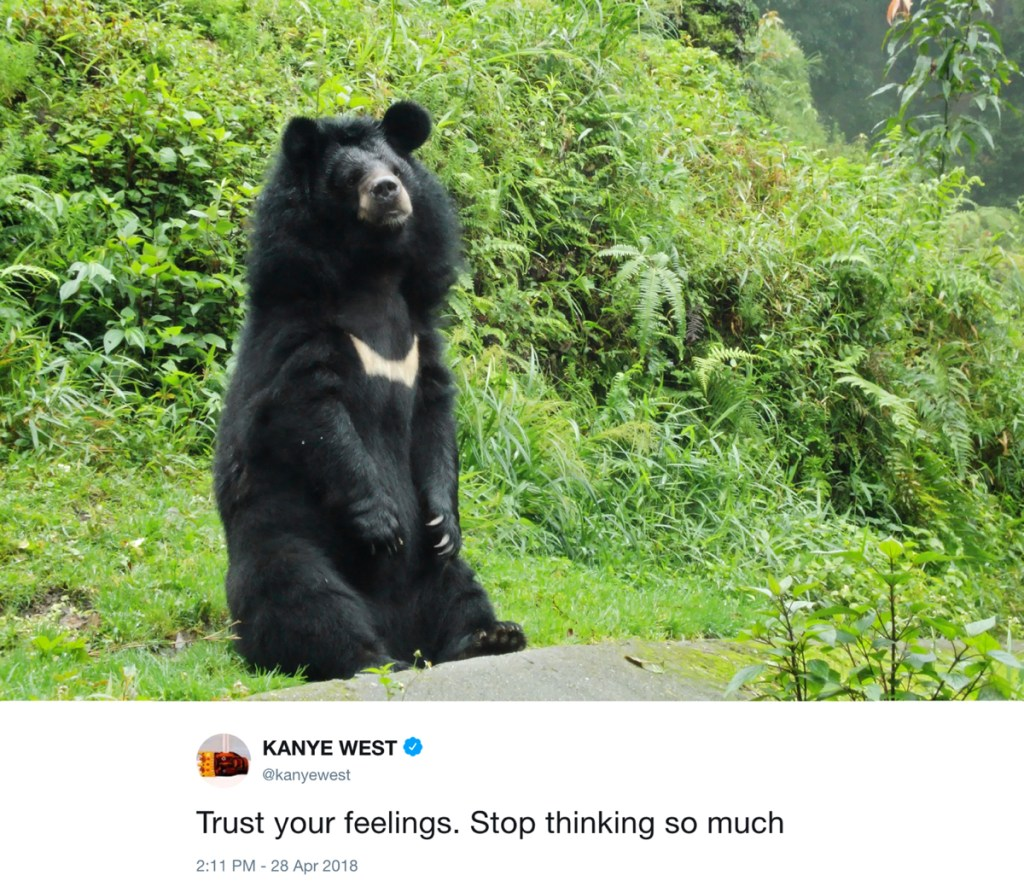 trust your feelings - kanye west tweets with photos of bears