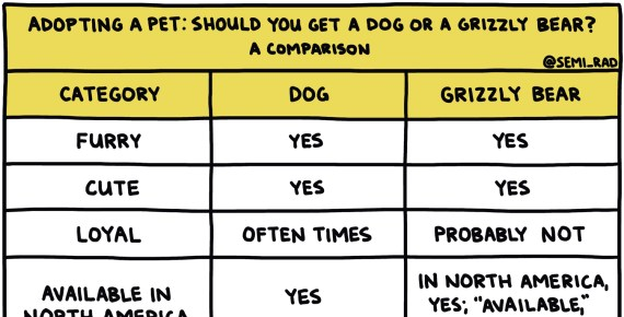 "screenshot of hand-drawn chart titled ""Adopting a Pet: Should You Get A Dog Or A Grizzly Bear?"""