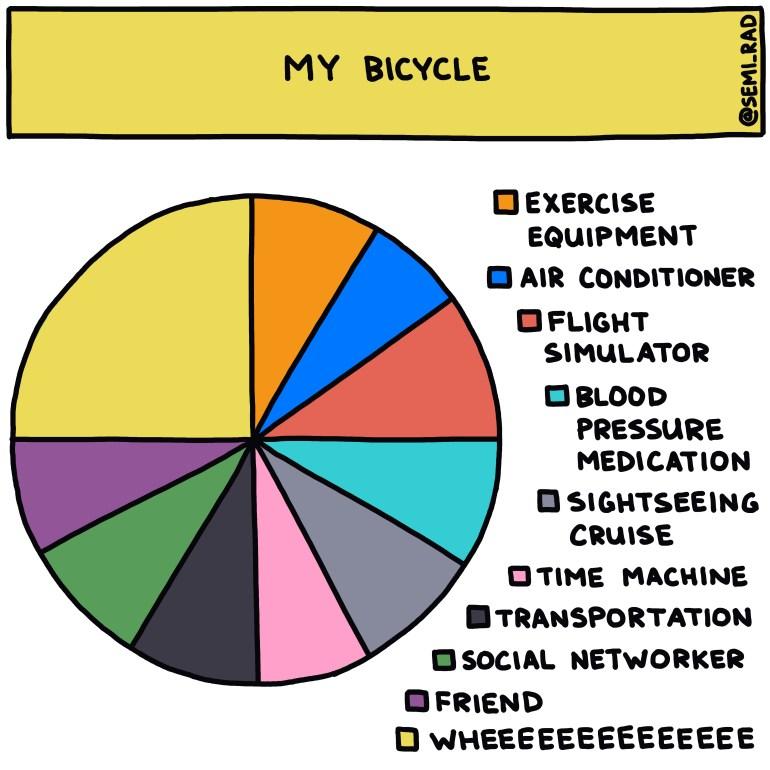 semi-rad chart: my bicycle