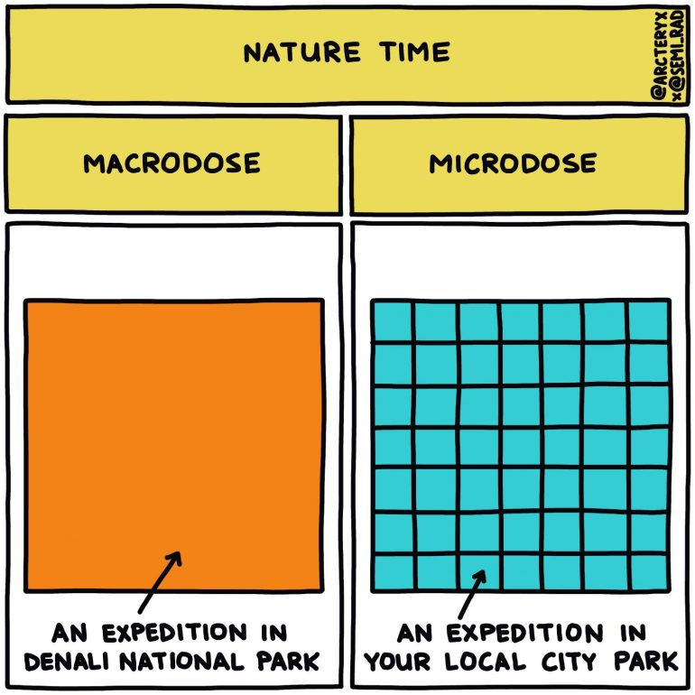 semi-rad chart: nature macrodose vs microdose expedition