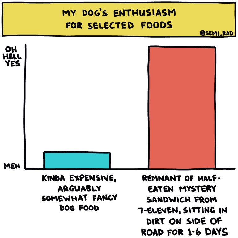 semi-rad chart: my dog's enthusiasm for selected foods