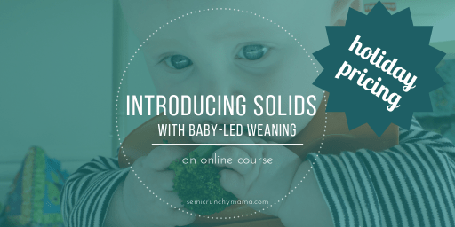 Introducing Solids with Baby Led Weaning online course, 20% off through Monday