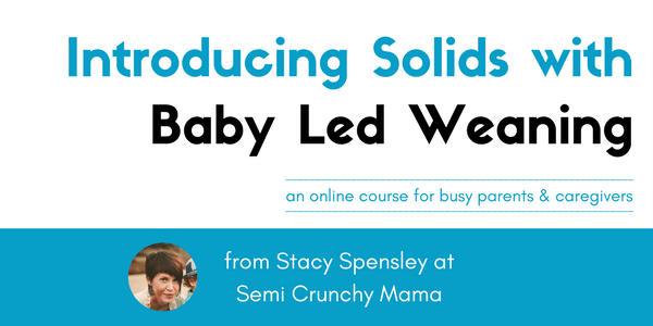 Introducing Solids with Baby Led Weaning Online Course