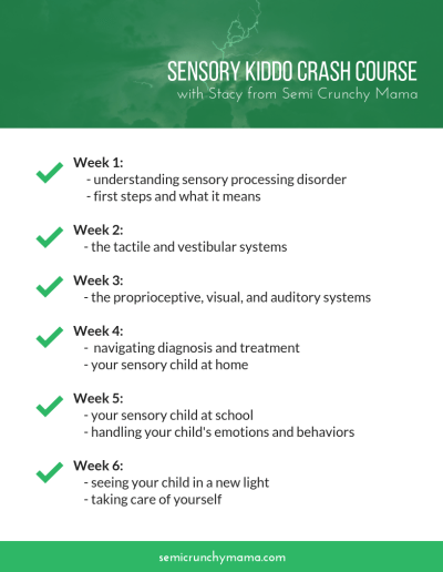 Week 1:       - understanding sensory processing disorder      - first steps and what it means  Week 2:      - the tactile and vestibular systems  Week 3:     - the proprioceptive, visual, and auditory systems  Week 4:      -  navigating diagnosis and treatment     - your sensory child at home  Week 5:     - your sensory child at school     - handling your child's emotions and behaviors  Week 6:     - seeing your child in a new light     - taking care of yourself