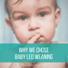 Why We Chose Baby Led Weaning