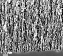 Transmission electron microscope image of the surface of porous silicon coated with graphene. The coating consists of a thin layer of 5-10 layers of graphene which filled pores with diameters less than 2-3 nanometers and so did not alter the nanoscale architecture of the underlying silicon. (Source: Vanderbilt University)