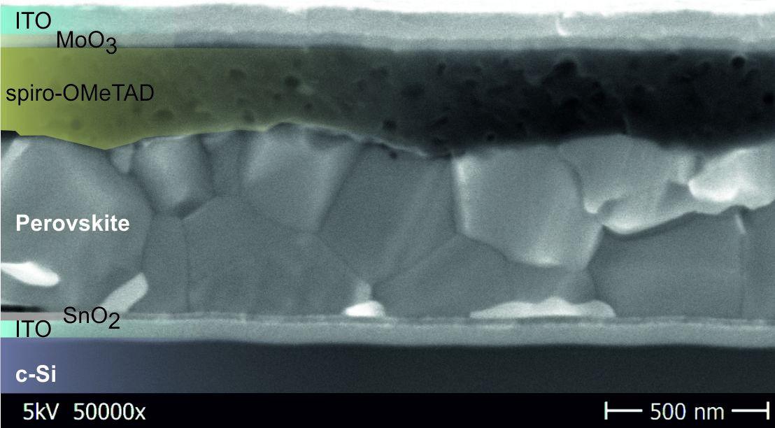 perovskite silicon tandem cell sem HZB EPFL nov10