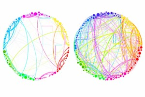"""This diagram demonstrates the simplified results that can be obtained by using quantum analysis on enormous, complex sets of data. Shown here are the connections between different regions of the brain in a control subject (left) and a subject under the influence of the psychedelic compound psilocybin (right). This demonstrates a dramatic increase in connectivity, which explains some of the drug's effects (such as """"hearing"""" colors or """"seeing"""" smells). Such an analysis, involving billions of brain cells, would be too complex for conventional techniques, but could be handled easily by the new quantum approach, the researchers say. (Source: MIT)"""
