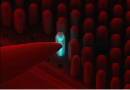 ChipScope will involve the creation of the world's smallest LEDs (about 50nm), which will be the light source for the new microscope. (Source: University of Barcelona)