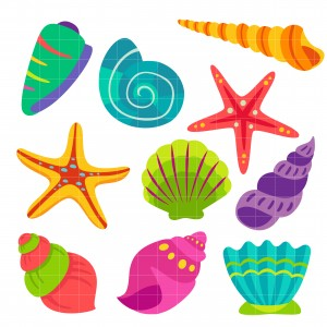 Colorful Seashells Set Semi Exclusive Clip Art Set For