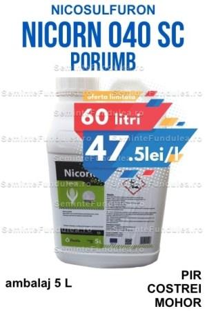 nicorn, erbicid porumb nicosulfuron, 60L