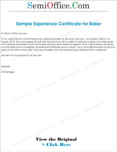 Experience Letter Format for Baker