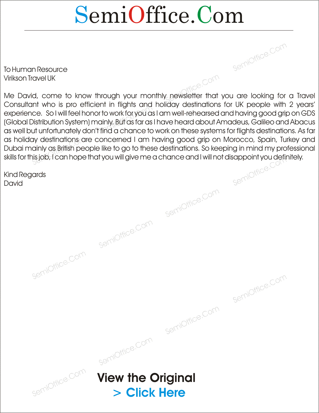 Cover Letter for Travel Consultant