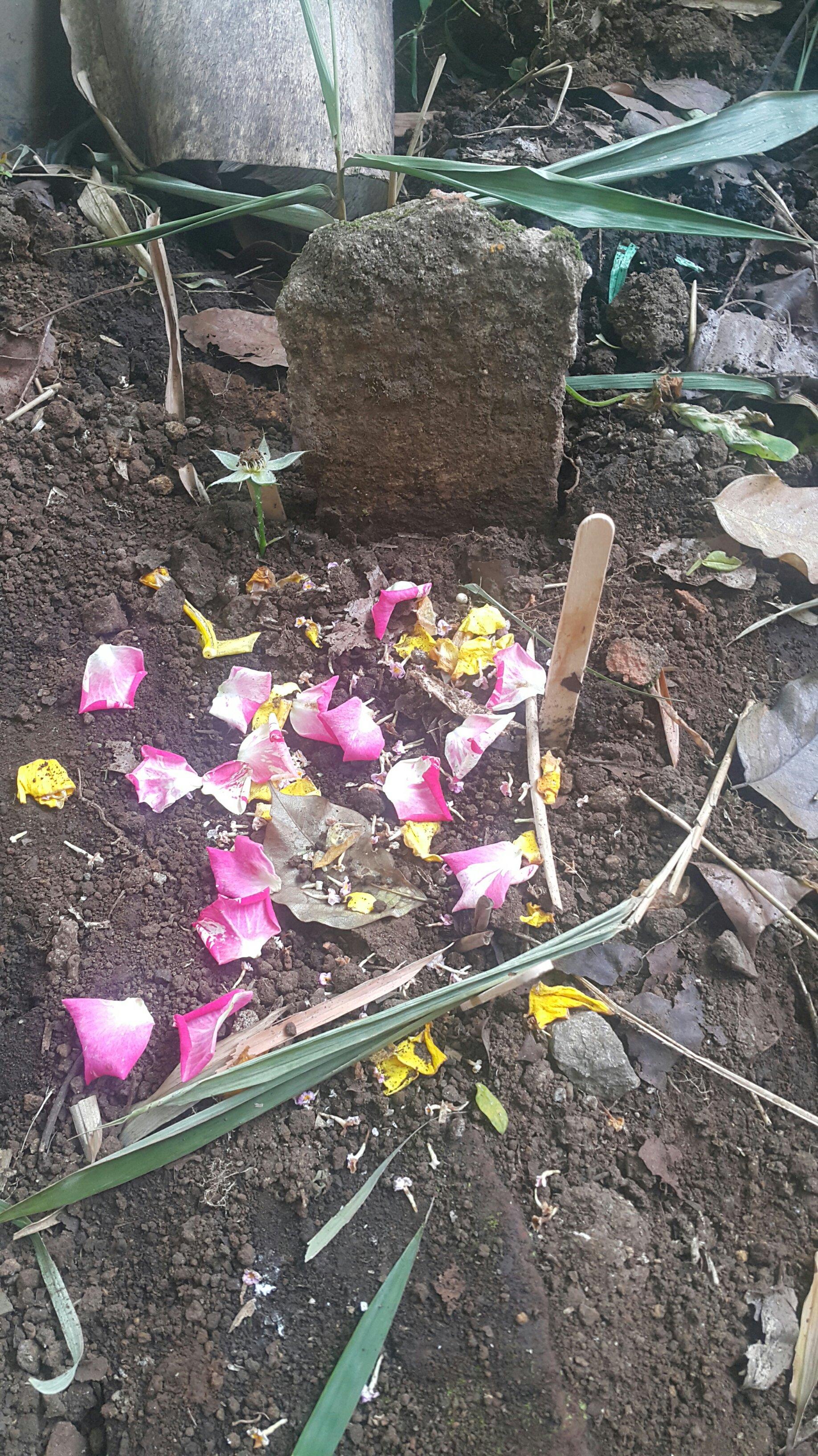 dua anak, bunga dan doa