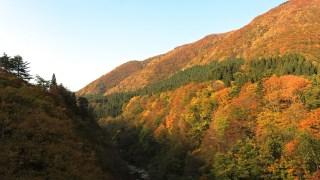 栗駒山の山開きはいつ?