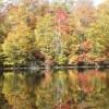 刈込池の紅葉狩り!見頃の時期とアクセス