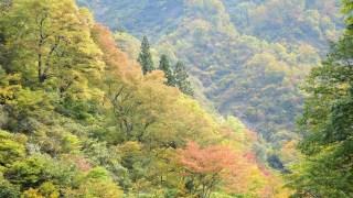 清津峡で紅葉狩り!見頃の時期とアクセス