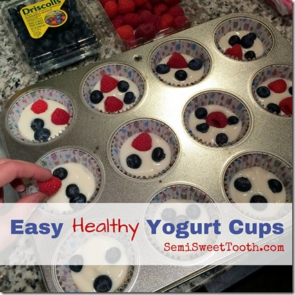Easy Yogurt Cups