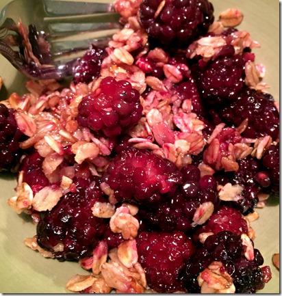 blackberry crumble_2