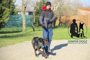 Semper-Dogz---éducateur-canin-nantes-cholet---la-précision-du-geste