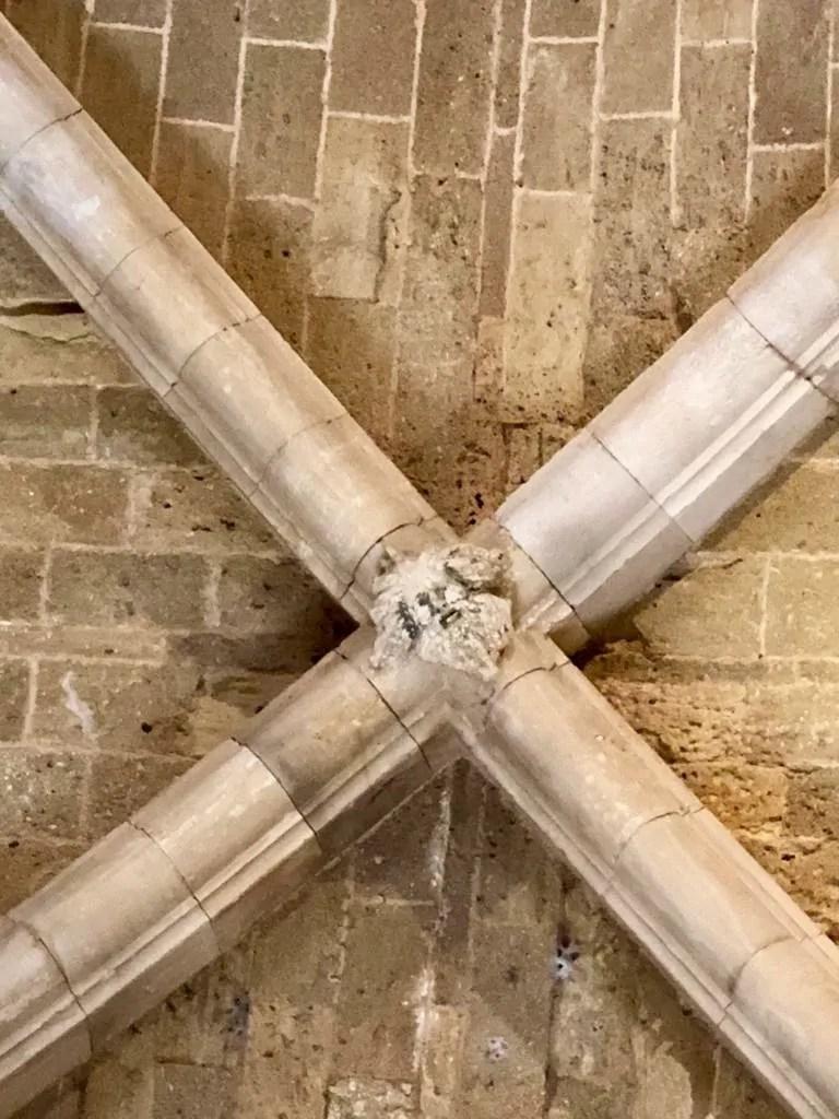 Chiave di volta del soffitto di Castel del Monte