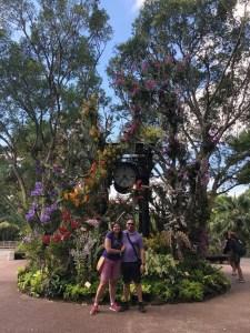 Il giardino botanico di Singapore