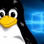 quais-as-diferencas-entre-linux-e-windows