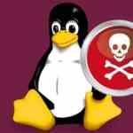 Novo malware do Linux explora criptografia após instalar o backdoor com senha mestra secreta