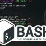 Como mostrar a branch do Git no Bash