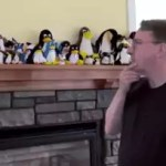 Linus Torvalds diz que arquitetura ARM não é para o mercado de servidores