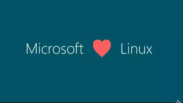Richard Stallman critica a Microsoft e pede liberação do código fonte do Windows
