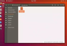 como-executar-um-arquivo-run-ou-bin-no-linux-2018