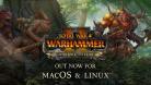 Total War: WARHAMMER II - The Silence & The Fury está disponível para Linux