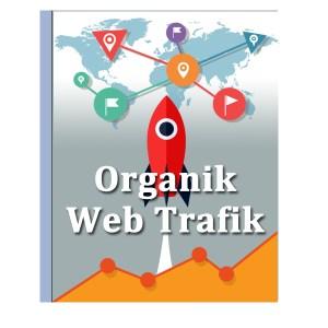 organik-web-trafigi-tum-dunya