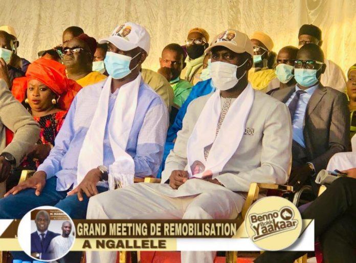 Bamba Fall mobilise Ngallele au profit de Macky Sall