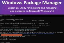 Microsoft Windows Package Manager